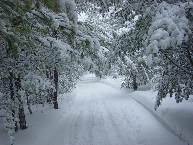 winter-19312_640.jpg